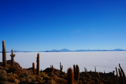 Incahuasi and the Salt Flats